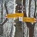 ....in breve si è all'Alpe di Melano