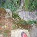Hüttenzustieg über Roc de la Vache mit Fixseilen