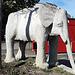 auch ein Elefant tummel sich auf dem Gelände der Mittelschule Lindenberg - die wertvollen Stoßzähne waren wohl Opfer eines Kunstraubs