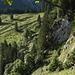 Die Geröllhalde ist überwunden, das Gelände wird angenehmer. Vorerst geht es über steiles Gras aufwärts.