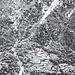"""Sull' """"Atlante dell'edilizia rurale in Ticino. Valmaggia - Volume 1"""" è riportata questa foto del 1944. <br />Si vedono distintamente : <br />a) attacco della via; <br />b) lo Spluiasc al termine del canalone; <br />c) sentiero che risale a zig-zag a sx della pietraia sopra lo Spluiasc; <br />d) ultima valletta da risalire per uscire alla scalinata di Olimpio (fuori dalla foto).<br />"""