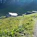 Die Alpila Alpe (1.686m) in der Morgensonne