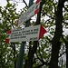 Vetta Monte Minisfreddo quota 1042 metri. Entrambi i cartelli segnalano gli stessi luoghi, ma opposte direzioni. Per raggiungere il Monte San Bernardo, proseguiamo intuitivamente a: SINISTRA !!