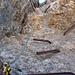 Das waren im Ersten Weltkrieg einmal Stufen… Abstieg durch eine senkrechte Verschneidung an der Punta Serauta