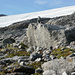 Am Fusse des Basodino-Gletschers