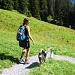 Weiss jemand wem der Hund gehört? Er hat uns treu begleitet von Käserstatt bis Bidmi.