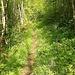 Wanderweg Saignelégier - Goumois