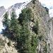 Die Schlüsselstelle (Rückblick): Man steigt rechts vom Grat über die steile Wiese ab, quert heikel unter die Baumgruppe in der Bildmitte und steigt durch diese ohne grosse Probleme über gute Tritte auf den Grat zurück.