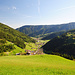 Die schönen Wiesen am Messnerhof