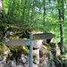 Einen Hinweis auf den Aufstieg zur Alpeel gibt es erst hier. Der Bergwanderweg zur Stauberen geht hier nicht (mehr) vorbei, sondern bei einer Hütte in einer Kehre des Forstweges (P 729), den man immer mal wieder schneidet, nach Norden in den Hang. Einige Meter weiter links geht es dann zur Alpeel hoch. Man kann auch noch den Forstweg weiterlaufen (1 Kehre) und kommt dann zu diesen Wegweisern