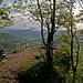 Aussichtsterrasse auf dem Geissberg