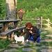 Veronique e la gatta del rifugio.
