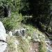 Von der Wasserspitz geht es einen schmalen Wiesenkamm entlang leicht absteigend in Richtung Rinnerspitz