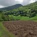 Ackerbau am Doubs