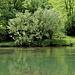 Sogar das Wasser ist grün