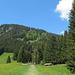 Lichtung mit Blick zum Grünten Sendemast, links der Berggasthof Alpenblick