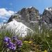 Monte Mulaz,2906m.