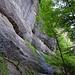 Steile und hohe Nagelfluh Felswände