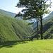 Blick ins hintere Val Morobbia