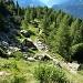 Sentiero verso Alpe Chiera