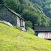 Monte di Dentro - gut unterhaltene Hütten und gepflegte Wiese