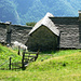 Monte di Fuori - hier wurde viel repariert