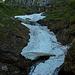 Der Weg zur Alpe Bardughè ist zur Zeit noch etwas mühsam...