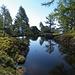 Il laghetto dello Zucchero ricorda certe atmosfere del Grande Nord