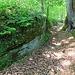 Hohlweg (deutliche Schleifspuren der Radnaben in unterschiedlicher Höhe, je nach fortschreitender Erosion)