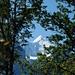 Wetterhorn vu de la sortie de l'Alpbachschlucht