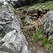 Abstieg Spitzkamp 1