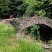 dopo il ponte si prosegue per Lavinol...