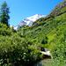 Man überquert diesen Bach über eine kleine Brücke. Im Hintergrund Petit-Mountet und Grand Cornier