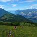 Sui pendii del Monte Stivo