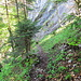 Abstieg nach Chäppeliberg, ganz schön nass der Untergrund