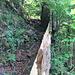 neu Geländer sichern den abschüssigen Weg