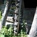 Alpe Cropia, 1553m - bearbeitete Balken stützen einen Stall