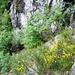 Cadinc - wilde Gegend mit Blick gegen den Graben des Ri di Croazöö