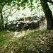 Zwischen Cadinc und Solögna - Ruine (Melkstand) auf 1210m, Koord 684230/137940