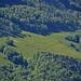 Noch ein Zoom ins Tal auf die löwenzahngelben Wiesen.