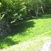 anschliessend wenige Meter wieder zurück und den Spuren im Gras folgend weiter in die Höhe