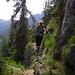 Wunderbares, abwechslungsreiches Alpingelände am Rinnkendlsteig