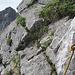 Auf dem Weg hat es oft Sicherungsmöglichkeiten, die interessanterweise von sehr wenig Berggängern benutzt werden.