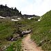 Die steile Rinne zum Gipfelgrat - sonst lag hier immer Schnee.