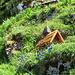 Miniaturkappelle im Vorgarten