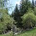 Alpe Casone: Buongiorno, gentile vipera berus!