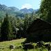 Alpe d'Arnau  - Blick zurück in den weiten Talkessel und zum Grat des Cregnell
