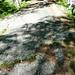 Der Weg ist das Ziel - Kein Teer: von der Natur (Gletscher) glattpolierte horizontale Steinplatte!