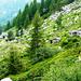 Abstieg von der Efra-Hütte - Alpe dell'Efra, 1686m