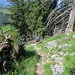 Der wilde und sehr schöne Bergwanderweg über die SW-Kante des Gross Aubrig.